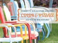 Thrifty Ideas For Adding Color and Pizzazz To Your Backyard