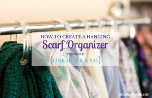 This is such a good idea! My scarf collection will finally be organized.