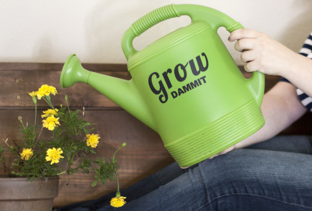 A watering can with personality - super simple Silhouette project