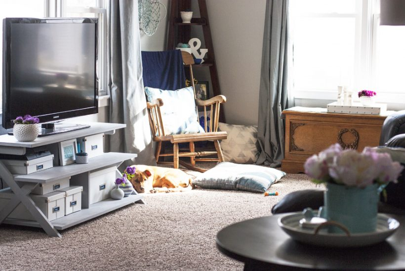 Pretty blue and grey living room and cute puppy!