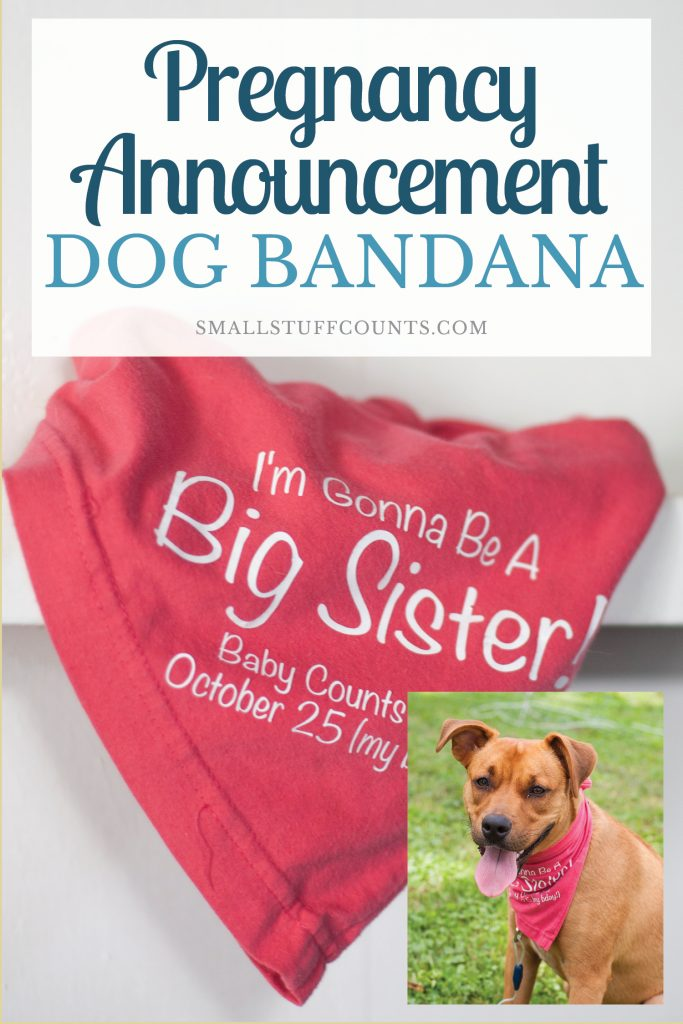 Learn how to DIY this cute pregnancy announcement dog bandana! Great project for my Silhouette / Cricut and an adorable baby announcement for parents and families.