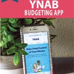 ynab-app-in-app-store-displayed-on-iphone-screen