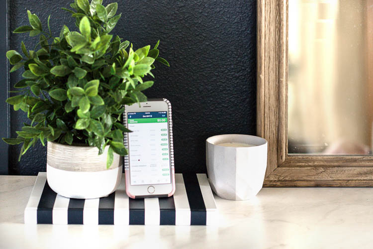 phone-and-plant-on-table