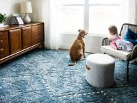 Do's & Don'ts For Buying A Rug Online