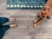 5 Reasons To Choose Laminate Flooring