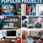 collage-of-popular-organizing-projects