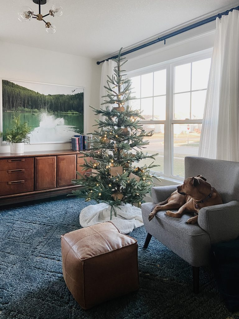 natural christmas tree in front room
