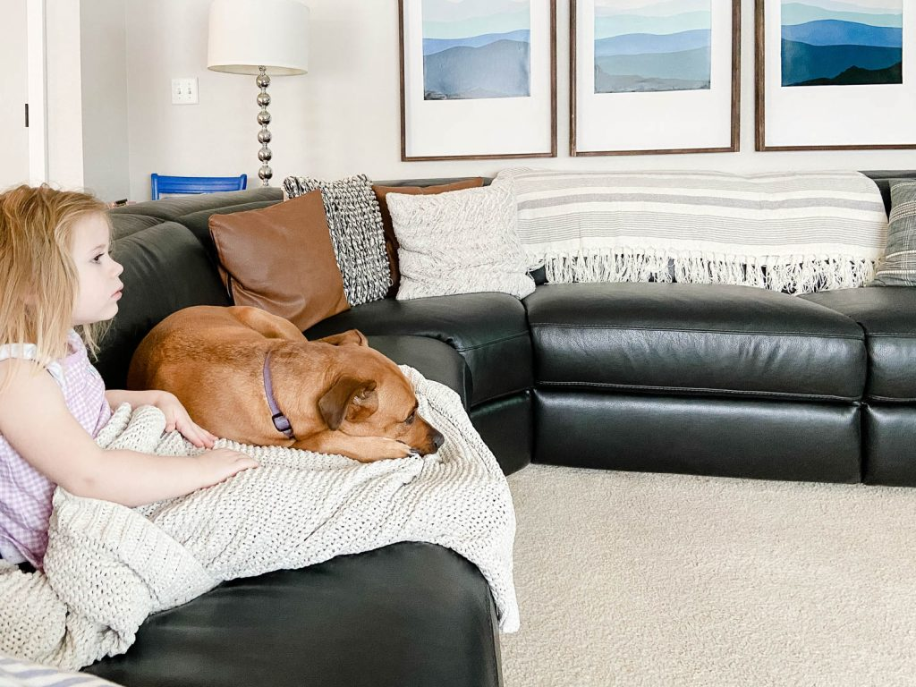 toddler and dog relaxing on a black leather sofa