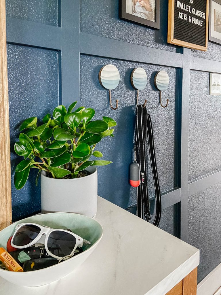 close up of entryway table with potted plant, bowl of sunglasses and keys, with hooks seen on the wall.